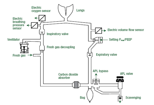 Gas Flow Diagram