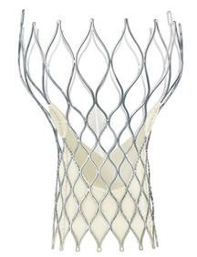 The Medtronic CoreValve® Evolut R Transcatheter Valve