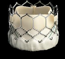 SAPIEN 3 Transcatheter valve