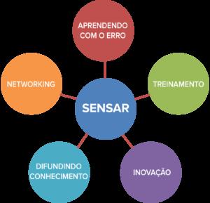 Figura 1: Estratégia multimodal do SENSAR desenvolvida em 2013 (5 anos após a fundação).