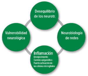 Figura 1: Hipótesis fisiopatológicas del delirio postoperatorio. Neurotr.: Neurotransmisor.