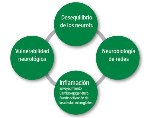 Figura1: Hipótesis fisiopatológicas del delirio postoperatorio. Neurotr.: Neurotransmisor.