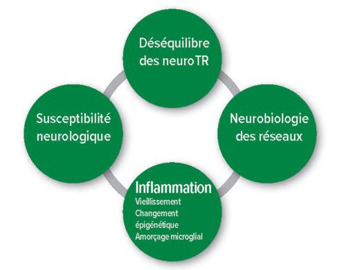 Figure1: Hypothèses pathophysiologiques du delirium postopératoire. Déséquilibre Neurotransmetteurs.
