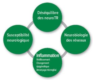 Figure 1 : Hypothèses pathophysiologiques du delirium postopératoire. Déséquilibre Neurotransmetteurs.