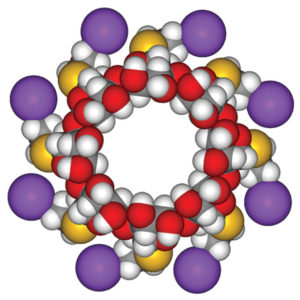 By Fvasconcellos (Own work) [Public domain], via Wikimedia Commons. Space-filling model of sugammadex sodium.