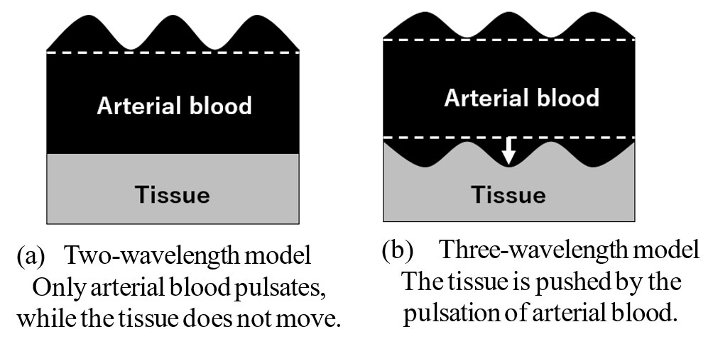Figure 1: Models of principles of pulse oximetry